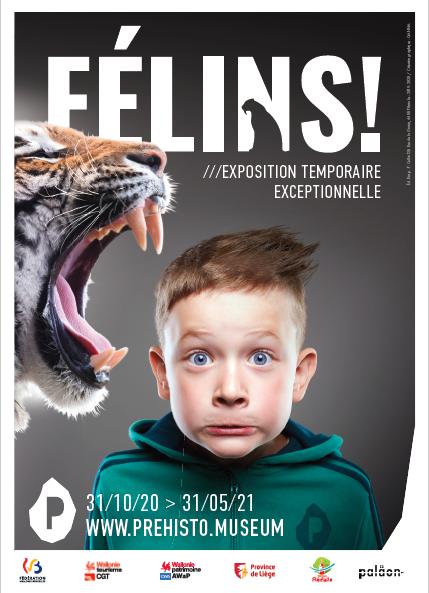 Visite guidée de l'exposition temporaire Félins !->title