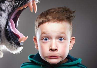 Félins ! Du tigre à dents de sabre au chat domestique