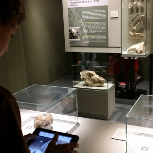 prehistomuseum_collections_tablette.jpg