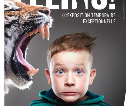 Visite guidée de l'exposition temporaire Félins !